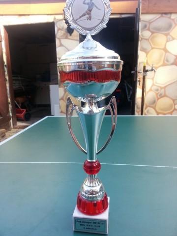 Pokalsieger 2012/13 MOL / F.F.O / LOS