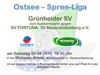 Handball Grünheide_Auswärts gegen SV Fortuna 50 Neubrandenburg 23.04.2016_18.30