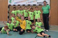 Viertelfinal-Partien in der Grünheider Löcknitzhalle: Handballer mit fünf Pokal-Spielen